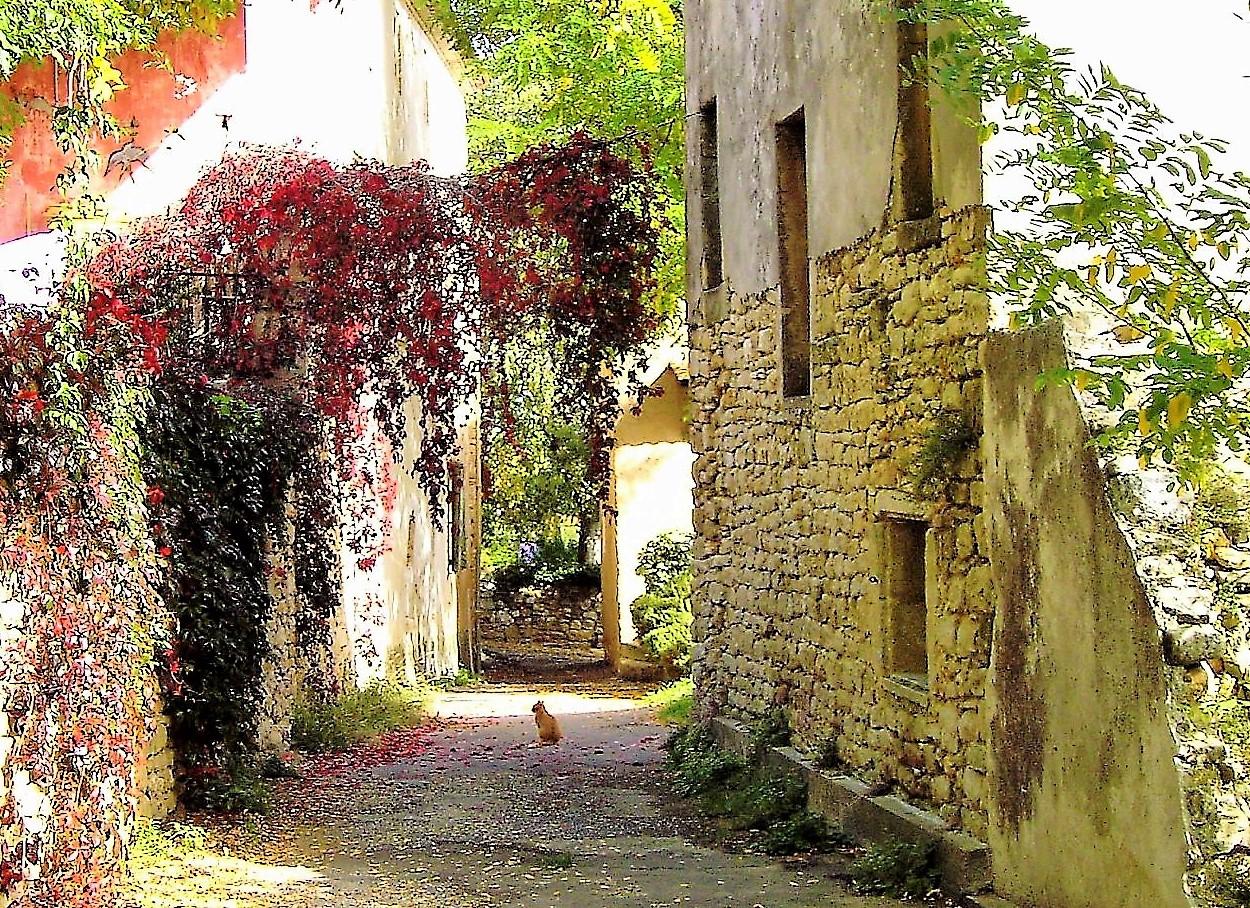 Sommer am Pont-du-Gard – Kapitel 6