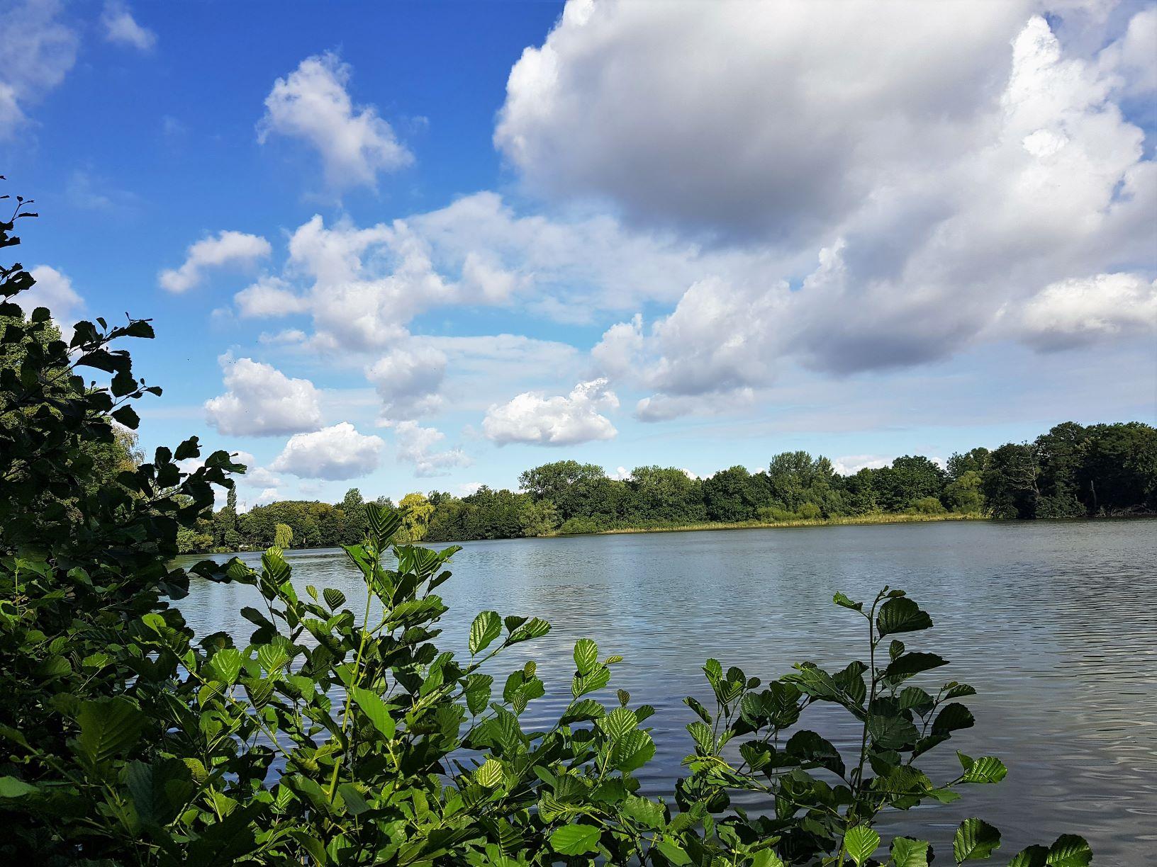 Naturschutzgebiet Riddagshausen – vor den Toren Braunschweigs