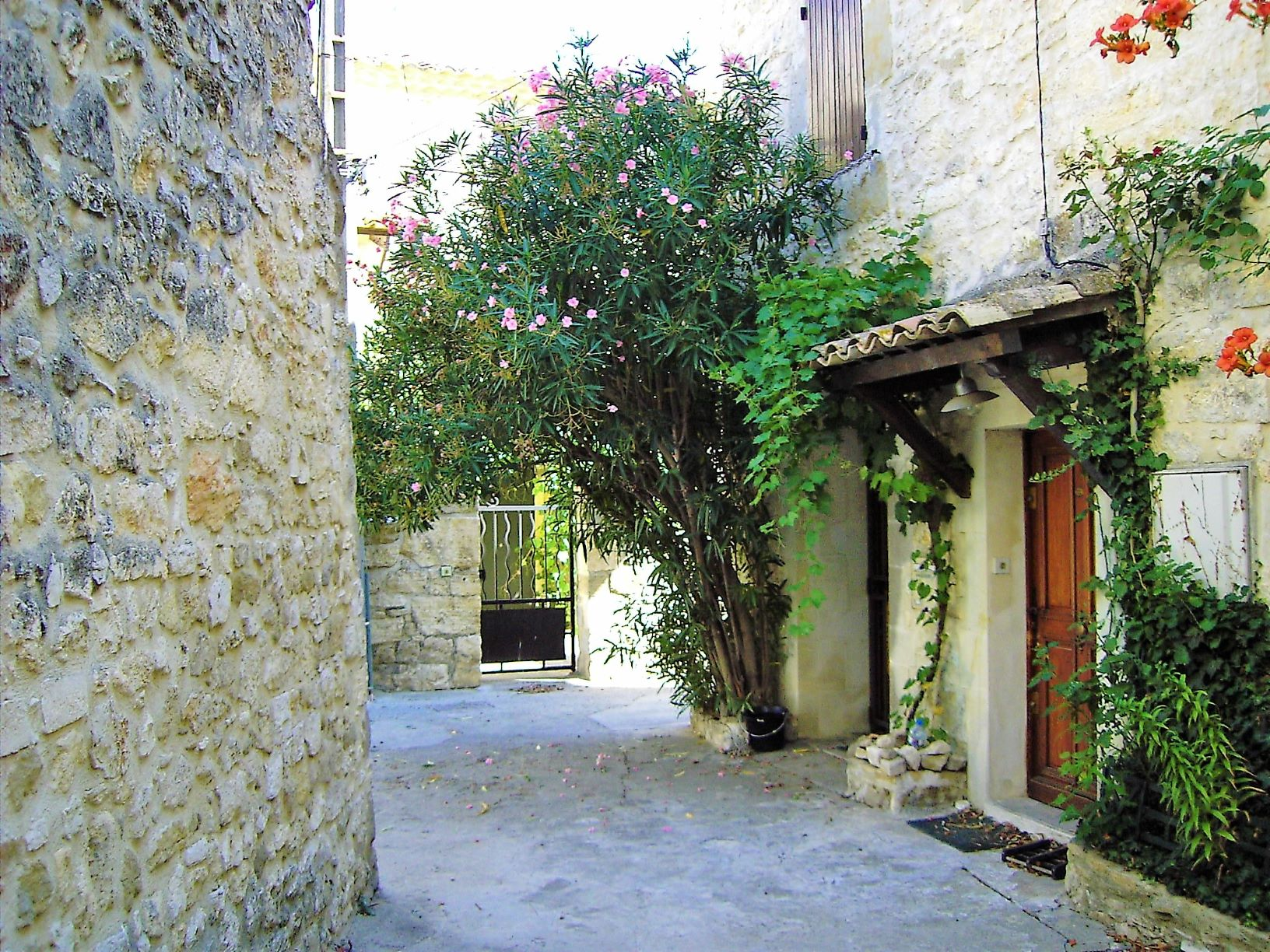 Sommer am Pont du Gard – Kapitel 12